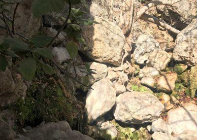 malibu-hiking-trail-solstice-canyon-santa-monica-mountains-12