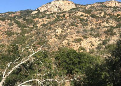 malibu-hiking-trail-solstice-canyon-santa-monica-mountains-17