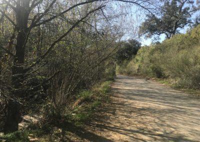 malibu-hiking-trail-solstice-canyon-santa-monica-mountains-19