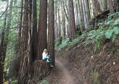 purisima-creek-redwoods-half-moon-bay-hike-3