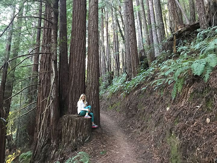 Purisma Creek Redwoods Half Moon Bay Hike
