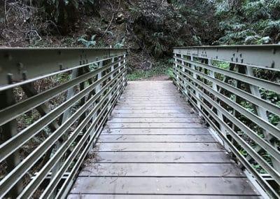 purisima-creek-redwoods-half-moon-bay-hike-5