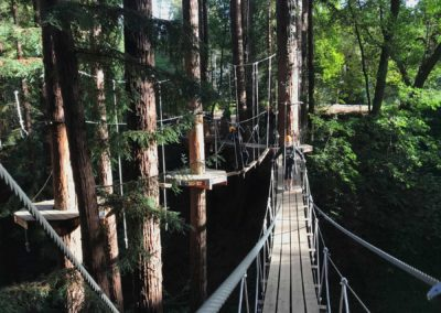 mount hermon adventure, santa cruz hike, canopy tours, zipline, mount hermon zip line, mount hermon redwood adventure, mount hermon tree park, mount hermon adventure park