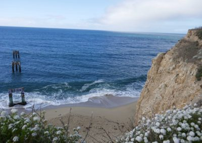 davenport-pier-swing-santa-cruz-hiking-trail-sean-tiner-10