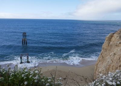 davenport-pier-swing-santa-cruz-hiking-trail-sean-tiner-5