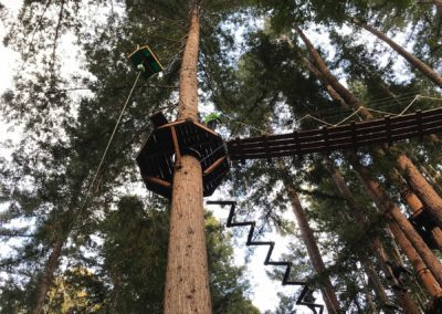 mount-hermon-adventure-redwood-canopy-tours-zipline-fun-11