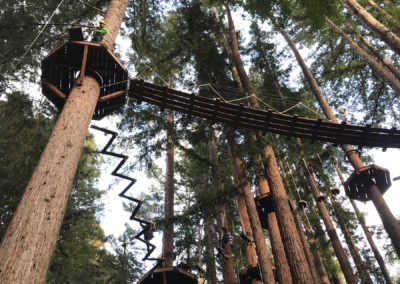 mount-hermon-adventure-redwood-canopy-tours-zipline-fun-12