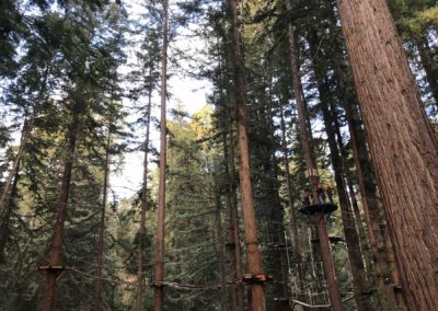 mount-hermon-adventure-redwood-canopy-tours-zipline-fun-13