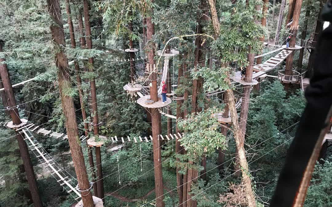 Mount Hermon Adventure Canopy Tour Reviews