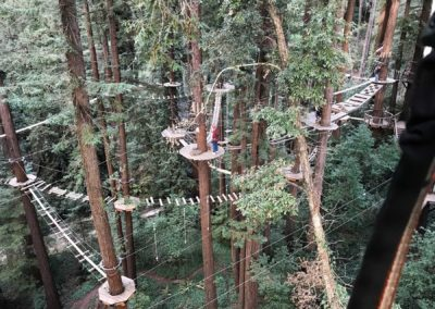 mount-hermon-adventure-redwood-canopy-tours-zipline-fun-17