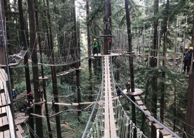 mount-hermon-adventure-redwood-canopy-tours-zipline-fun-19