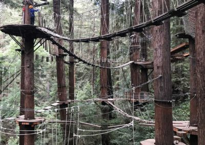 mount-hermon-adventure-redwood-canopy-tours-zipline-fun-2