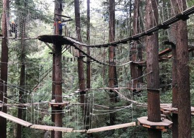 mount-hermon-adventure-redwood-canopy-tours-zipline-fun-21