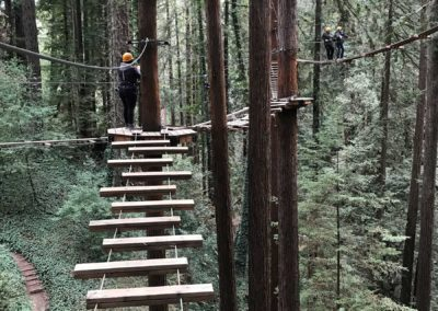mount-hermon-adventure-redwood-canopy-tours-zipline-fun-22