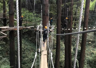 mount-hermon-adventure-redwood-canopy-tours-zipline-fun-23