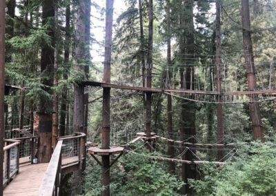 mount-hermon-adventure-redwood-canopy-tours-zipline-fun-28