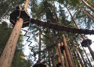mount-hermon-adventure-redwood-canopy-tours-zipline-fun-3