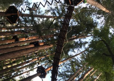 mount-hermon-adventure-redwood-canopy-tours-zipline-fun-7