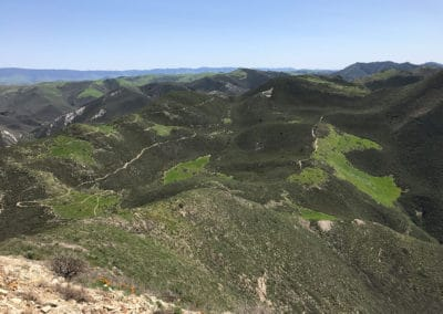 montana-de-oro-state-park-hiking-trail-21