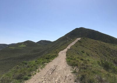 montana-de-oro-state-park-hiking-trail-22
