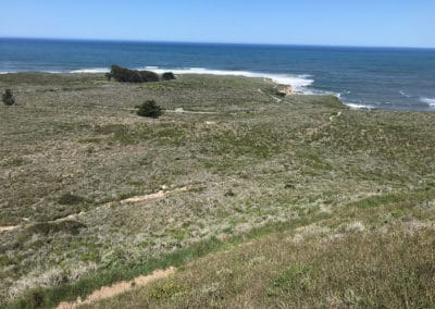 montana-de-oro-state-park-hiking-trail-30