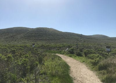 montana-de-oro-state-park-hiking-trail-64